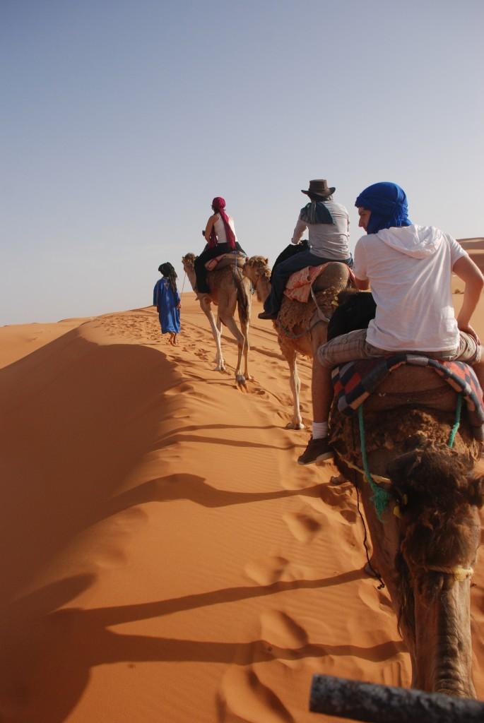 Os camelos são chamados também de os navios do Deserto