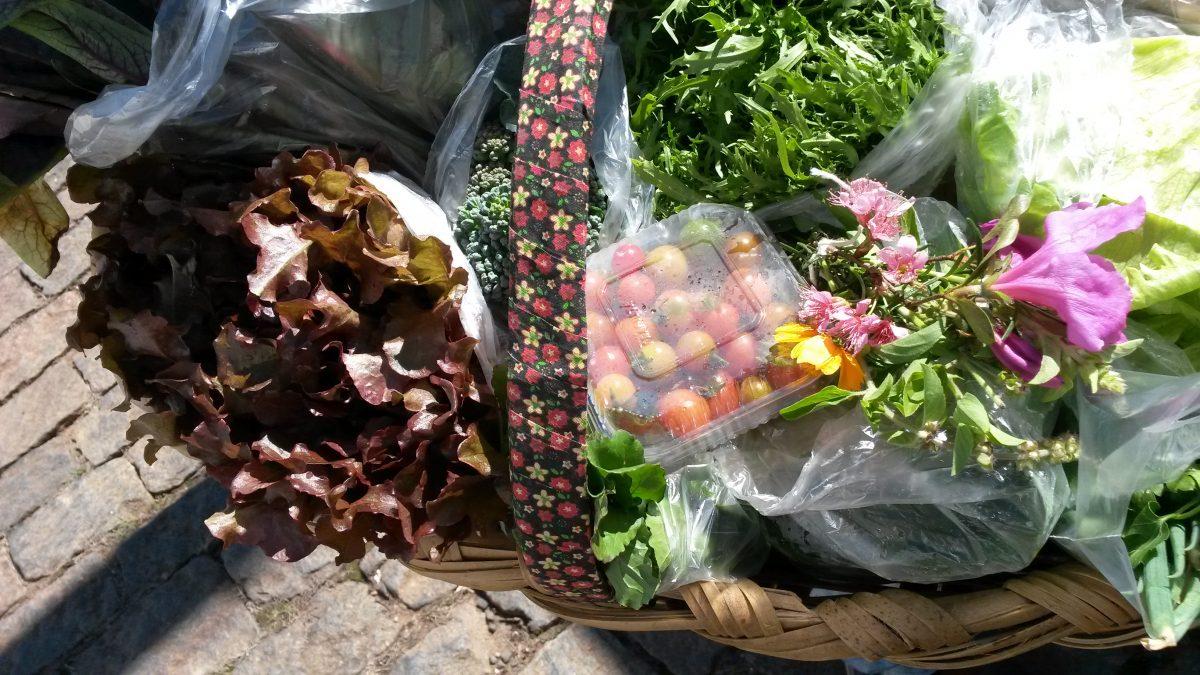 Cestas de orgânicos, uma ótima opção de sabor, saúde e praticidade